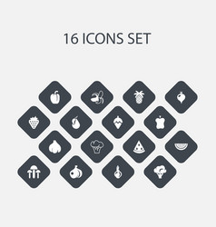 Set of 16 editable berry icons includes symbols vector