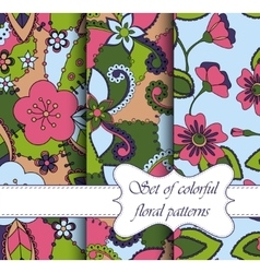 set of seamless patterns colorful floral vector image