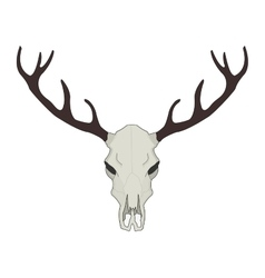 Deer skull Color vector image vector image