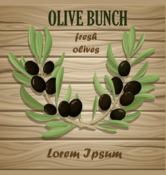 black olive oil natural template vector image