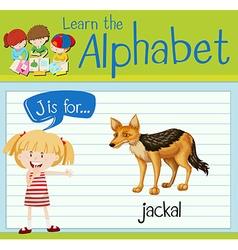 Flashcard letter J is for jackal vector image