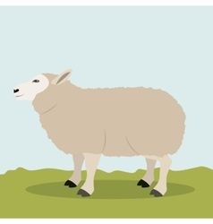 Colorful lamb animal design vector