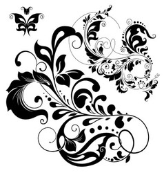 Floral Graphic design elements vector image