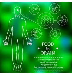 Food for brains vector image