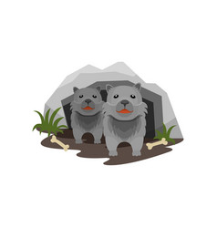 lair of wolves small cubs in stone cave vector image