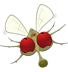 Little mosquito vector