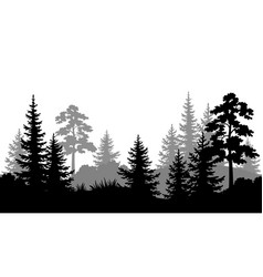 seamless background summer forest silhouettes vector image