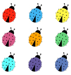Set of colorful Ladybird vector image
