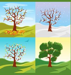 cartoon tree seasons set on a nature landscape vector image vector image