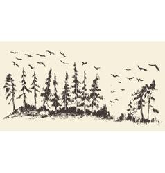 Hand drawn landscape fir forest migratory birds vector image vector image