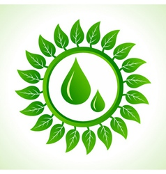 Water drops inside the leaf background vector image