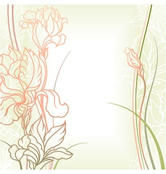 flowers with leafs vector image