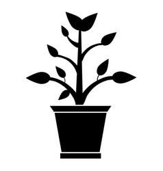 pot plant garden pictogram vector image vector image