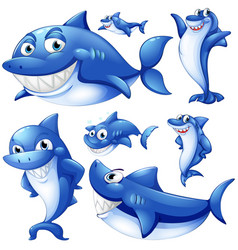 Blue sharks in different positions vector