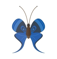 Colored cartoon butterfly isolated on white vector