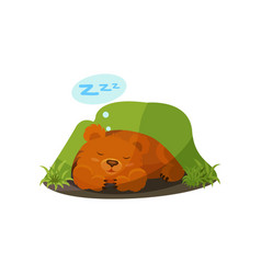 Cute bear sleeping in a den on vector