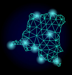 Polygonal carcass mesh map democratic republic vector