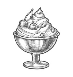 Sketch ice cream with cherry in sundae bowl cup vector