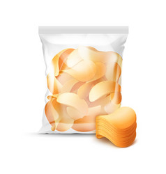 Transparent plastic bag full of potato chips vector