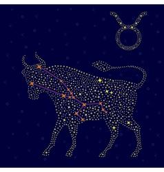 Zodiac sign Taurus over starry sky vector image