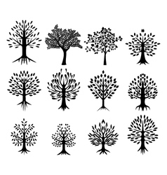 black tree silhouette collection vector image