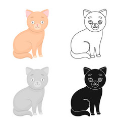 cat icon in cartoon style isolated on white vector image vector image