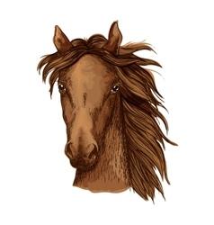 Beautiful brown horse portrait vector
