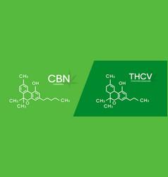 Cbn and thcv formula cannabinol and vector