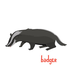 cute badger in cartoon style vector image
