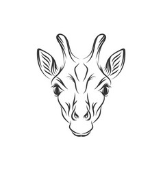 Hand drawn giraffe designs vector