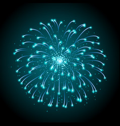 Holiday festival blue firework independence day vector