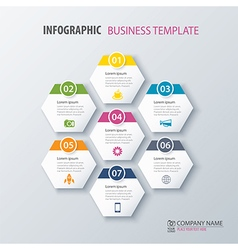 infographics options template for business vector image