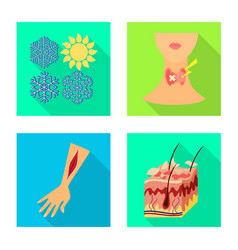 Isolated object dermatology and disease symbol vector