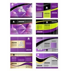 Professional three fold business template vector image