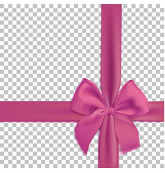 realistic pink bow and ribbon isolated on vector image