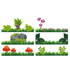 seamless background with flowers in garden vector image