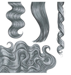 Shiny long grey fair straight and wavy hair curls vector