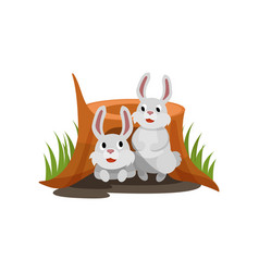 Two little white rabbits sitting in the hole vector