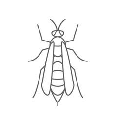 Wasp icon logo isolated white background vector