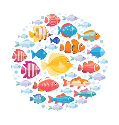 colorful aquarium fish set in circle vector image vector image