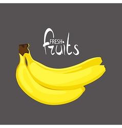 bunch of tasty bananas vector image