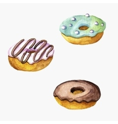 donuts drawing in watercolor vector image vector image