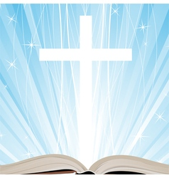 Holy Book and shine vector image