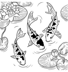 koi-fish vector image
