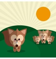 squirrel icon design graphic animal vector image