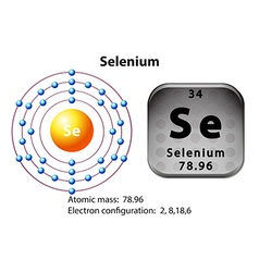 Symbol and electron diagram for Selenium vector
