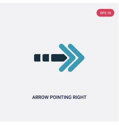 two color arrow pointing right icon from user vector image
