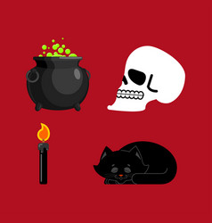 witch set magical pot and skull black cat and vector image