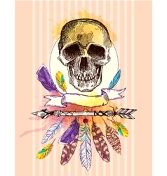 skull and feathers vector image vector image