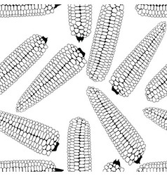 Corn seamless food background isolated cob vector
